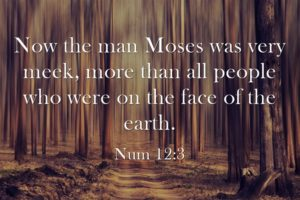 Now-the-man-Moses-was