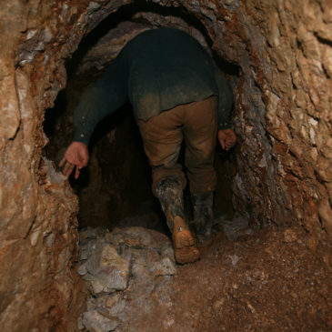 The Brave Miner