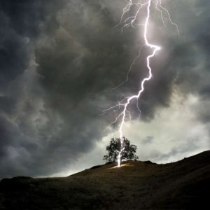 lightning strikes tree